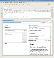 ws_tester_forms_toolkit_JAXRS_071310.jpg