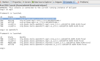 install-openshift-to-indigo-3.png