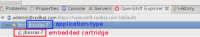 apptype-is-embedded-cartridge.png