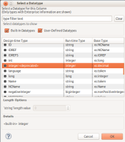 set-datatype-dialog_3.png
