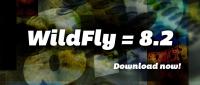 wildflycarousel_82.jpg