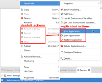 duplicate-application-actions.png