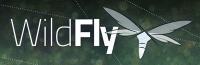 wildfly_400x130.jpg