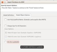 jdbc-import-set-updatable-check-box.png