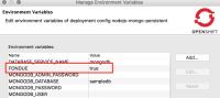 environment-variables-enable-debugging.png