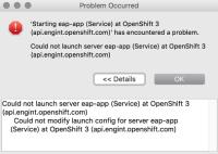 error-launching-server.png