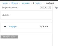project_explorer.png